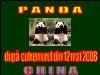 12 Mai 2008 - China. Ursii Panda Dupa Cutremur.