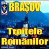 Brasov - Troitele Romanilor.