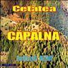 Cetatea Capalna, Jud. Alba.