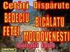 Cetati Disparute, Judetul Cluj.