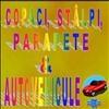 Copaci, Stalpi, Parapesi & Autovehicule. 01