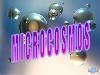 Microcosmos.