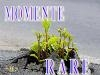 Momente Rare. 66