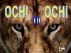 Ochi In Ochi. 16