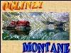 Oglinzi Montane.