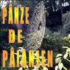 Panze De Paianjen. 01